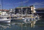 San Francisco Pier 39 Marina Boats